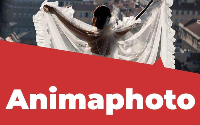 Animaphoto